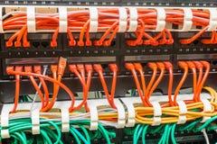 关闭被分类的网络缆绳被连接到开关 免版税库存照片