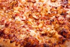 关闭被烘烤的piza成份看法  库存图片