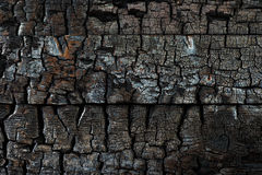 关闭被烧焦的木背景纹理 免版税库存照片