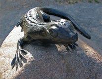 关闭观点的在大灰色石头的古铜色蜥蜴在公园 免版税库存图片