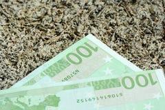 关闭许多欧洲一百欧元- 100 免版税库存图片