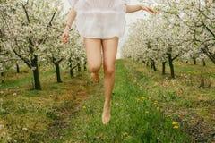 关闭赤足跳跃在开花的果树园的白种人妇女 免版税库存图片