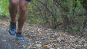 关闭运行沿足迹的运动的人的腿在早期的跑步沿道路的年轻运动员的秋天森林男性脚在 影视素材