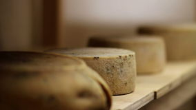 关闭采取从一个架子的妇女的手乳酪在贮藏室