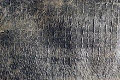 关闭难看的东西葡萄酒被构造的抽象灰色背景6 图库摄影