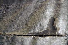 关闭难看的东西葡萄酒被构造的抽象灰色背景1 免版税库存照片