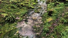 关闭顺流流程,在草附近增长一条小小河的射击 股票录像