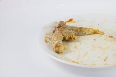 关闭骨头在吃在白色盘的牛排以后与与 免版税库存图片