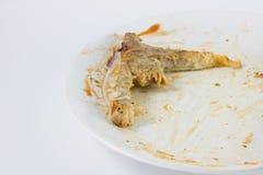 关闭骨头在吃在白色盘的牛排以后与与 图库摄影