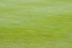 关闭高尔夫球绿色 图库摄影