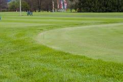 关闭高尔夫球绿色 库存照片