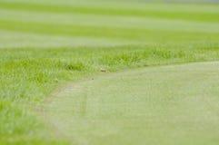 关闭高尔夫球绿色 免版税库存图片