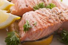 关闭鲑鱼排 免版税库存图片