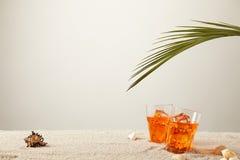关闭鸡尾酒与蕨和贝壳看法与冰的在沙子的在灰色背景 库存图片