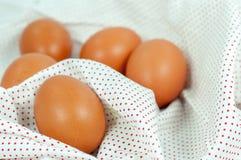 关闭鸡蛋 库存照片