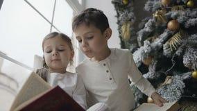 关闭,兄弟和姐妹坐一个大窗口的窗口基石在圣诞树和阅读书附近 影视素材