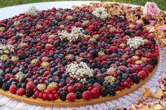 关闭,大莓果被盖的乳蛋糕馅饼 免版税库存图片