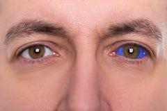 关闭,有蓝色眼珠纹身花刺的人 图库摄影