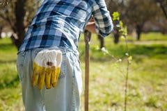 关闭从从事园艺的成人人休假 免版税库存图片