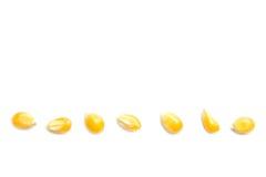 关闭黄色五谷玉米 免版税库存图片