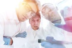 关闭 谈论一个小组的科学家exp的结果 免版税库存照片