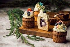关闭 饼干甜蓝莓淡紫色松饼,他们中的一个在裁减 用一个奶油色帽子装饰的上面用莓果 库存图片