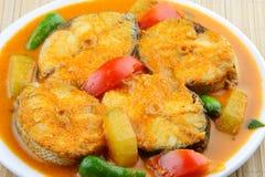 关闭Baracuda鱼咖喱亚洲样式5。 免版税库存图片
