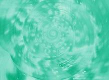 关闭Helmet Conch国王在薄荷的绿色的海壳螺旋和纹理  免版税库存图片