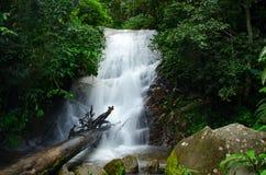 关闭Siriphum瀑布由采取在土井Inthanon国家公园 库存图片