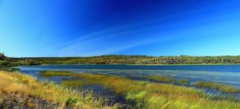 兴旺的在耶洛奈夫,西北地区附近的湖领土公园 免版税库存照片