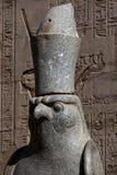 头其中一个一只猎鹰的花岗岩雕象在Horus寺庙的在埃德富,埃及 免版税库存照片
