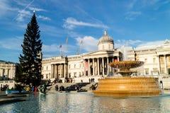 其中一个喷泉在特拉法加广场,伦敦 库存图片