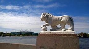 其中一个在Elagin海岛上的狮子雕塑有体育场的圣彼得堡在背景中 库存图片
