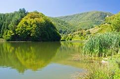 其中一个Semenic国家公园的湖 免版税库存照片