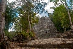 其中一座印象深刻的石金字塔在科巴,古老玛雅城市废墟在尤加坦,墨西哥 库存图片