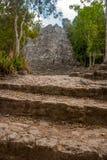 其中一座印象深刻的石金字塔在科巴,古老玛雅城市废墟在尤加坦,墨西哥 库存照片