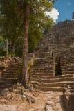 其中一座印象深刻的石金字塔在科巴,古老玛雅城市废墟在尤加坦,墨西哥 免版税库存照片