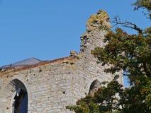 其中一维斯比废墟哥得兰岛的 免版税库存照片