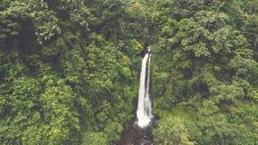 其中一Bali's最高的瀑布实际上未触动过一个在平静自然围拢紧贴了 免版税图库摄影