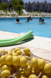 其中每一设立了风镜有节假日课程桃红色海运海边游泳游泳轮子的女孩 免版税图库摄影