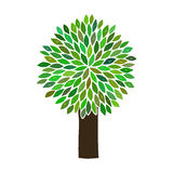 其中任一是能例证图象损失解决方法被称的范围对结构树向量 免版税库存图片