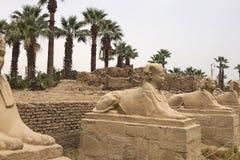 其他埃及的雕象 寺庙纪念碑巨石 免版税库存图片