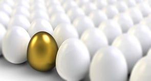 金黄鸡蛋 库存例证