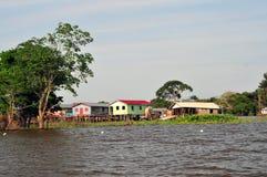 典型亚马逊家庭的密林 免版税图库摄影