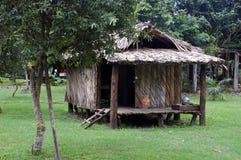 典型亚马逊habitaion印第安的当地人 免版税图库摄影