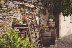 典型的倾斜在一个石墙的Ticinese工具和花 库存图片