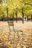 典型的公园椅子在卢森堡庭院里。巴黎 免版税库存照片