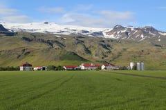 典型的农场在冰岛 免版税库存图片