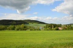 典型的农村漂泊森林风景,捷克,欧洲 免版税库存图片