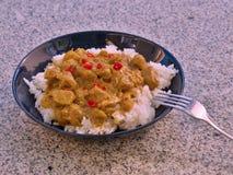 典型的印地安食物热的羊羔咖喱的详细的图片用米和切好的辣椒在深板材服务 免版税库存图片